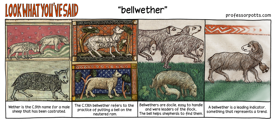 Bellwether idiom explained