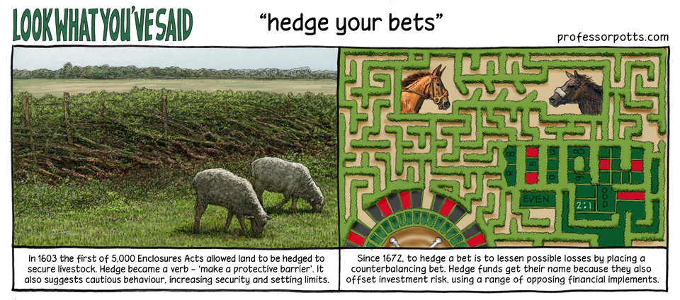 Hedged bet definition