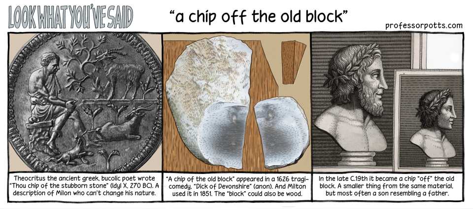 A Chip Off the OldBlock